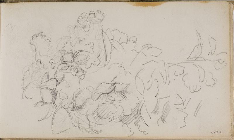 Etude de fleurs, 1883–86 (3006-32a)