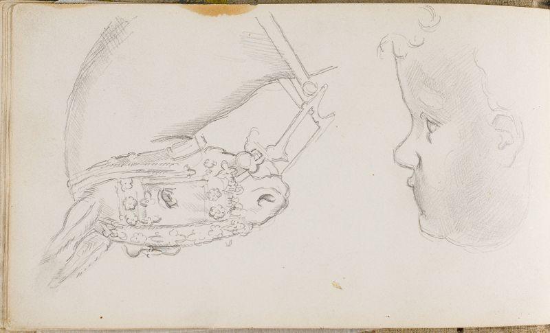 D'après Pisanello et Leonardo da Vinci: tête d'un mulet et profil d'un enfant, 1878–81 (3006-11b)