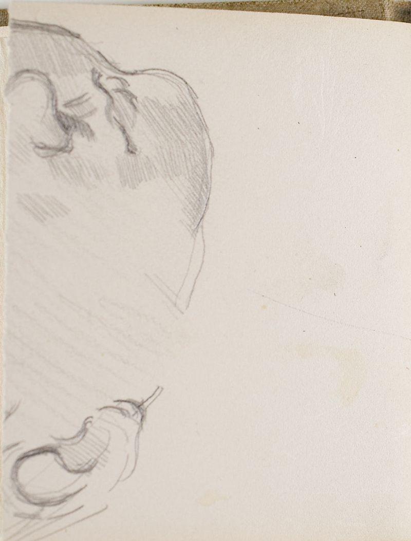D'après Leonardo da Vinci: tête d'enfant, 1878–81 (3006-12b)